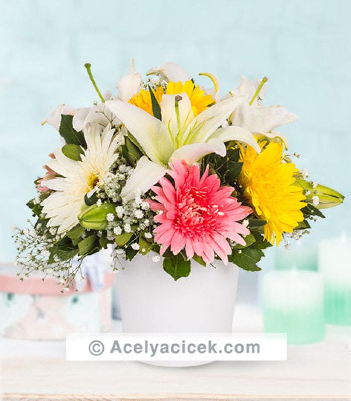 Baharda Çiçekler