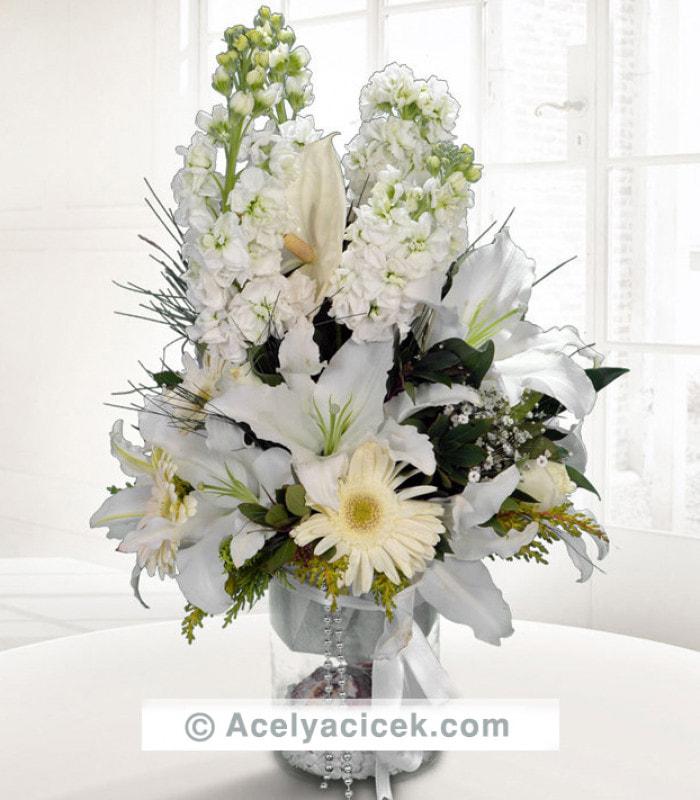 Beyazın Güzelliği