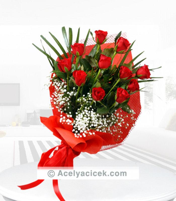 Kırmızı Güllerin Doğallığı