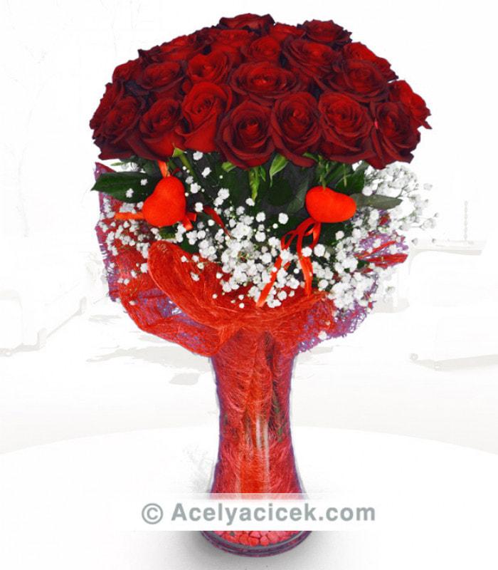 Kırmızı Hasırlı Güller