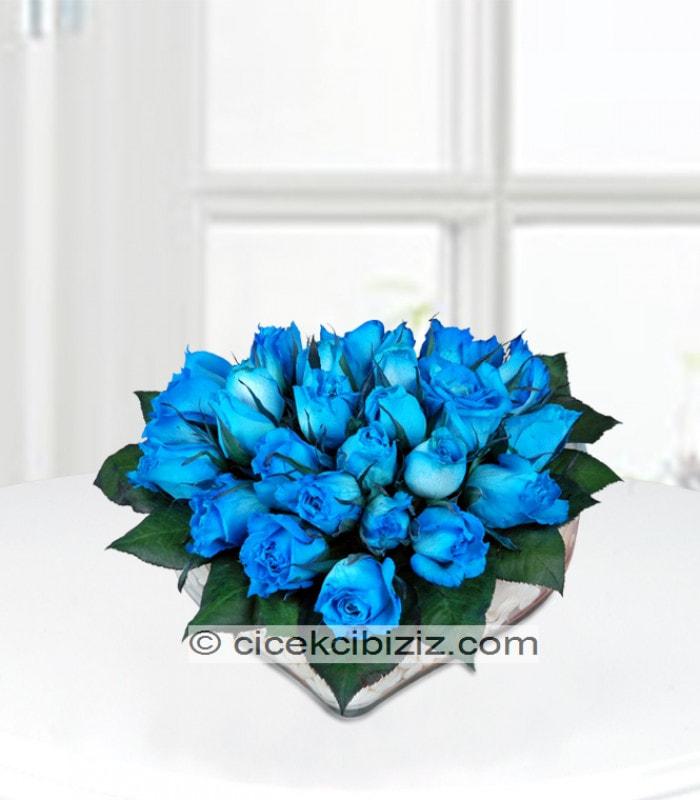 Kalpte Mavi Gül