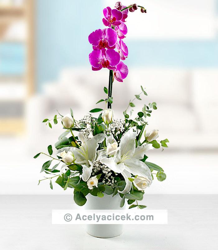 Mor Orkideye Beyaz Aranjman