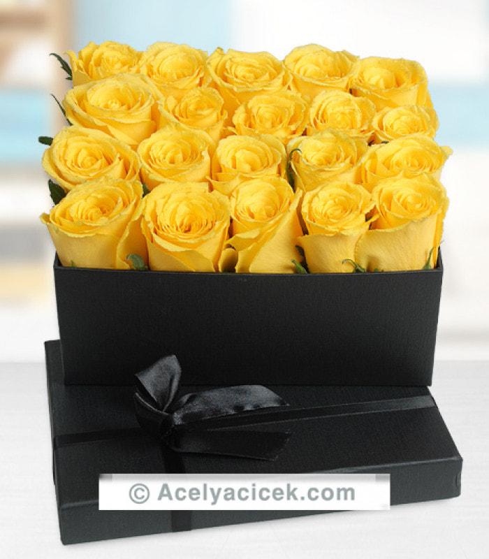 Kutu Sarı Güller